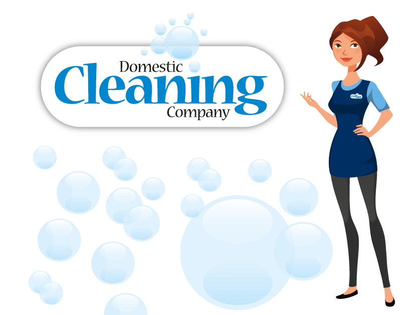 The Domestic Cleaning Company